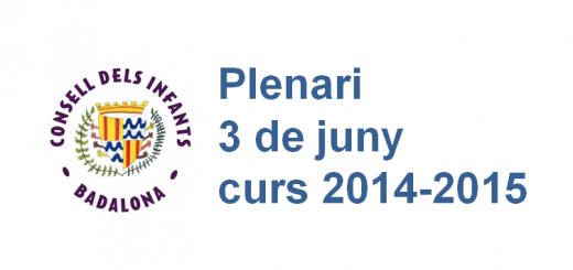 plenari CIB 3.6.2015