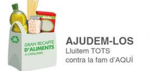 Gran Recapte Aliments Catalunya 2014