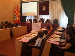 Plenari CIB 25-5-16